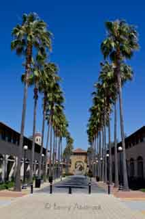 stanford university benny abolmaali photography